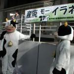 県庁前要請行動_09